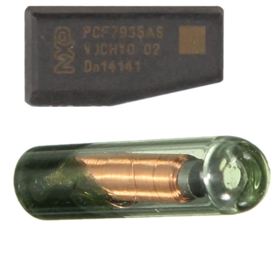 Chip Transponder